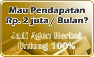 jadi agen herbal
