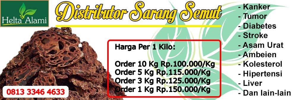 Distributor Obat Herbal